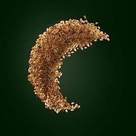 Wirkstoff Sesam | René Furterer