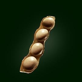 Principio attivo di soia | René Furterer