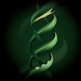 植物角蛋白精華 | Rene Furterer